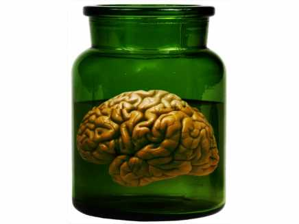 Brain in a jar