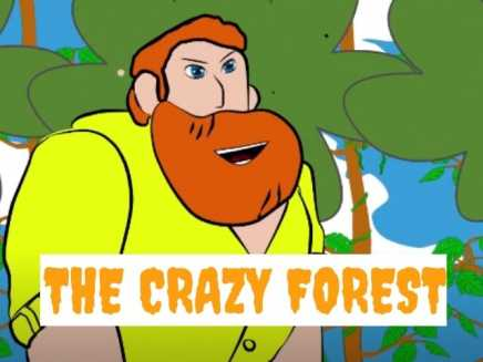 the crazy forest