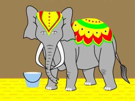 Indian Elephant Rig