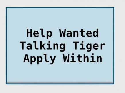Talking Tiger Interview