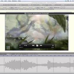 Anime Studio 10 Webinar