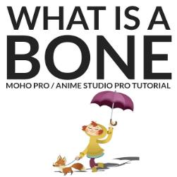 What is a bone